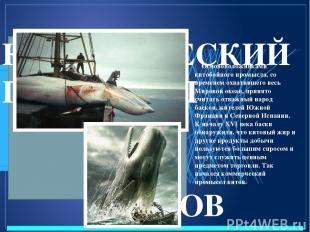 КОММЕРЧЕСКИЙ ПРОМЫСЕЛ КИТОВ Основоположниками китобойного промысла, со временем