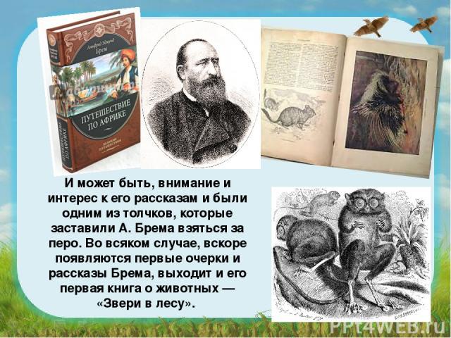 И может быть, внимание и интерес к его рассказам и были одним из толчков, которые заставили А. Брема взяться за перо. Во всяком случае, вскоре появляются первые очерки и рассказы Брема, выходит и его первая книга о животных — «Звери в лесу».