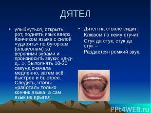 ДЯТЕЛ улыбнуться, открыть рот, поднять язык вверх. Кончиком языка с силой «ударя