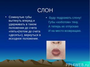 СЛОН Сомкнутые губы вытянуть вперед и удерживать в таком положении до счета «пят