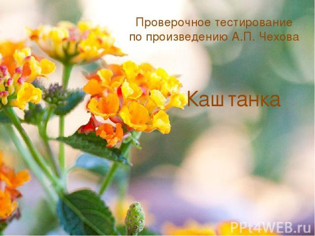 Проверочное тестирование по произведению А.П. Чехова Каштанка
