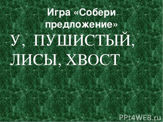 Игра «Собери предложение» У, ПУШИСТЫЙ, ЛИСЫ, ХВОСТ