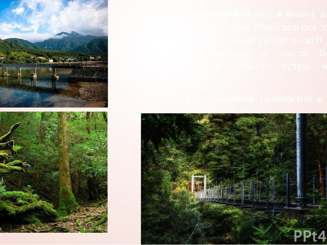 Якусіма Якусіма – невеликий острів в Японії, відомий як унікальний зразок добре зберігшогося тропічного лісу в якому ростуть найстаріші в світі дерева. У 1993 острів включений в список Всесвітньої спадщини ЮНЕСКО. Часто острів називають скорочено – …