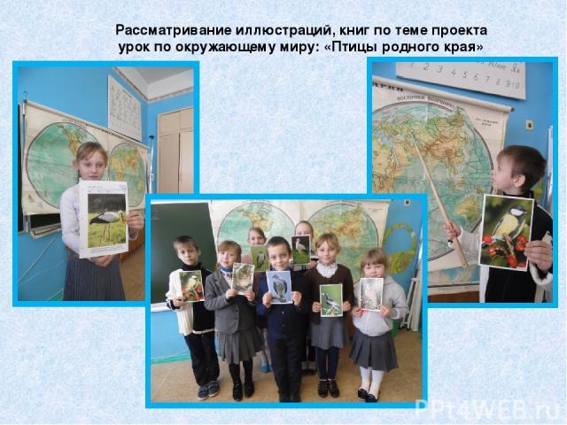 Рассматривание иллюстраций, книг по теме проекта урок по окружающему миру: «Птицы родного края»