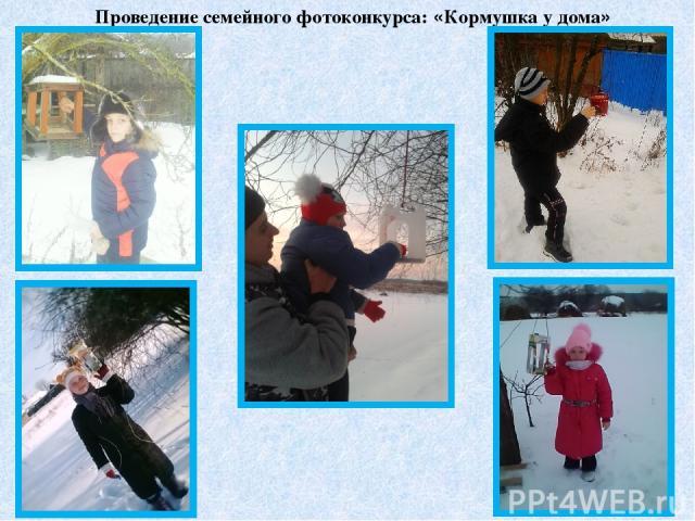 Проведение семейного фотоконкурса: «Кормушка у дома»