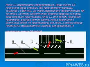Лінію 1.1 перетинати забороняється. Якщо лінією 1.1 позначено місце стоянки або