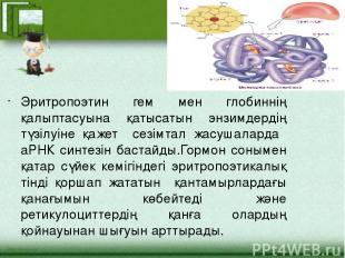 Эритропоэтин гем мен глобиннің қалыптасуына қатысатын энзимдердің түзілуіне қаже