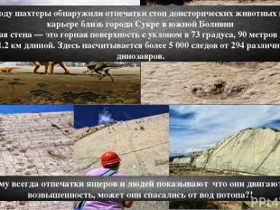 В 1985 году шахтеры обнаружили отпечатки стоп доисторических животных в горном к