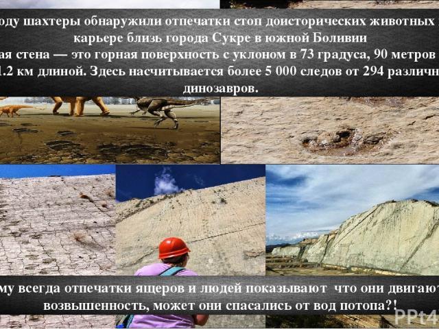 В 1985 году шахтеры обнаружили отпечатки стоп доисторических животных в горном карьере близь города Сукре в южной Боливии Огромная стена — это горная поверхность с уклоном в 73 градуса, 90 метров высотой и 1.2 км длиной. Здесь насчитывается более 5 …