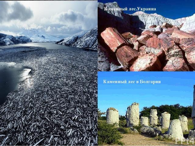 Каменный лес в Болгарии Каменный лес.Украина
