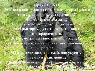 Прит.23:29-33: 29 У кого вой? у кого стон? у кого ссоры? у кого горе? у кого ран