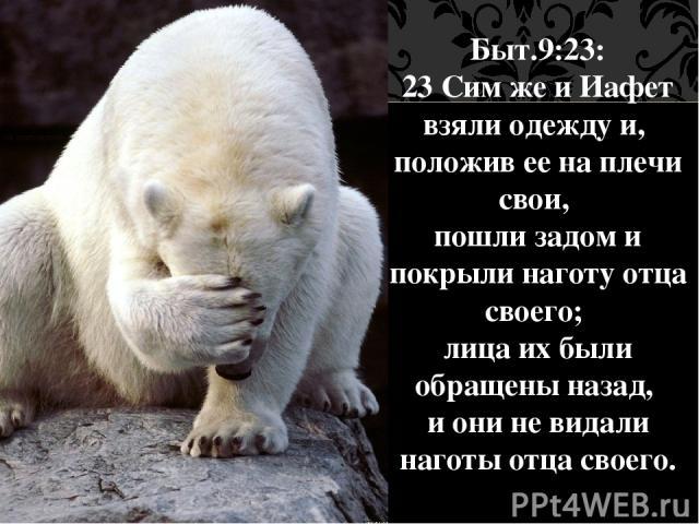 Быт.9:23: 23 Сим же и Иафет взяли одежду и, положив ее на плечи свои, пошли задом и покрыли наготу отца своего; лица их были обращены назад, и они не видали наготы отца своего. Следующий:
