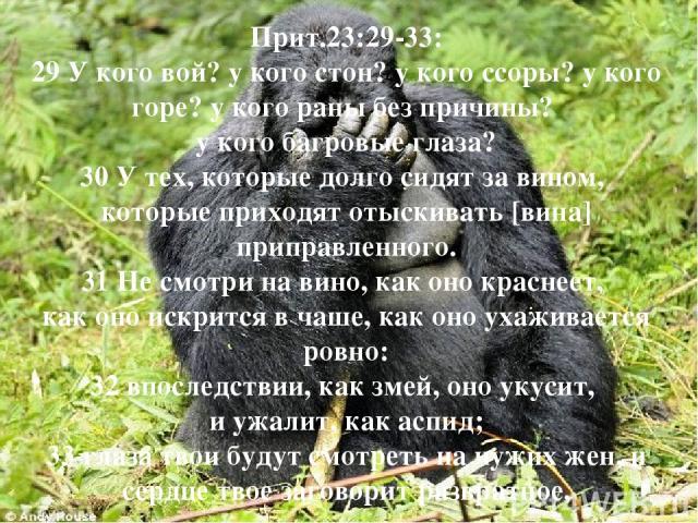 Прит.23:29-33: 29 У кого вой? у кого стон? у кого ссоры? у кого горе? у кого раны без причины? у кого багровые глаза? 30 У тех, которые долго сидят за вином, которые приходят отыскивать [вина] приправленного. 31 Не смотри на вино, как оно краснеет, …