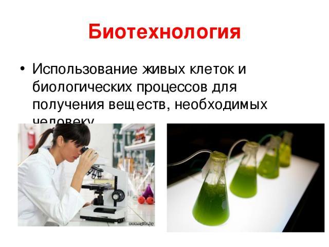 Биотехнология Использование живых клеток и биологических процессов для получения веществ, необходимых человеку