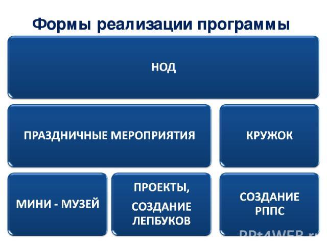 Формы реализации программы