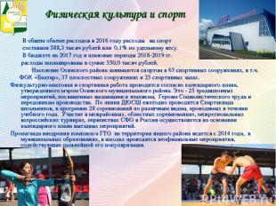 В общем объеме расходов в 2016 году расходы на спорт составили 588,3 тысяч рубле