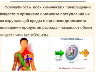 Совокупность всех химических превращений веществ в организме с момента поступлен
