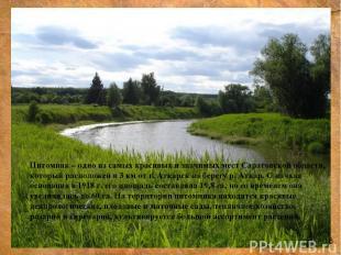 Питомник – одно из самых красивых и значимых мест Саратовской области, который р