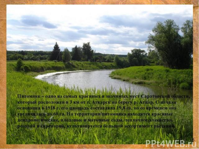 Питомник – одно из самых красивых и значимых мест Саратовской области, который расположен в 3 км от г. Аткарск на берегу р. Аткар. С начала основания в 1918 г. его площадь составляла 19,8 га, но со временем она увеличилась до 60 га. На территории пи…