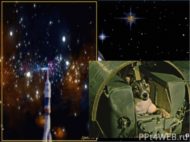 И вот более полувека назад, в ноябре 1957 года, первое живое существо поднялось в космическое пространство. Как вы думаете кто это мог быть? Конечно наши четвероногие друзья. И это была собака Лайка. И вот более полувека назад, в ноябре 1957 года, п…