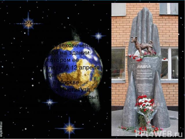 . А Лайка самая первая из побывавших в космос собак, и в память об этом герое-первопроходце увековечена памятной доской на здании института, в котором ее готовили к полету. А 12 апреля 2008 года, в День космонавтики, в Москве напротив здания Институ…