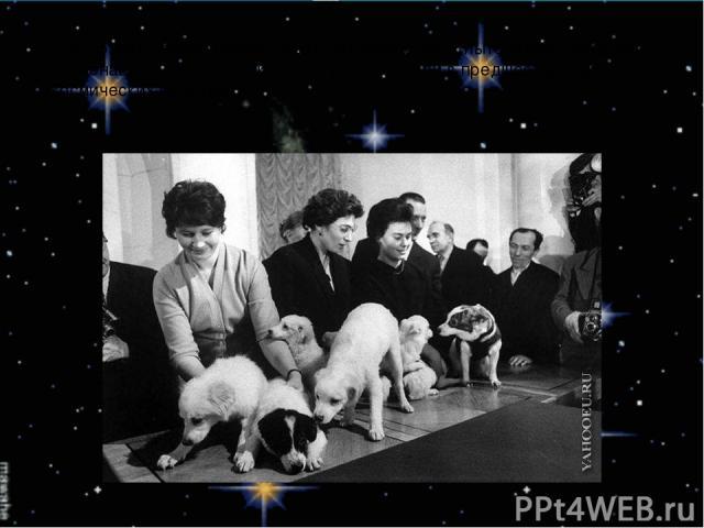 Был создан своеобразный отряд четвероногих испытателей и будущих космонавтов , многие из которых учавствовали в предшествующих космических полетах.