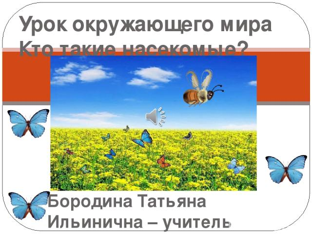 Бородина Татьяна Ильинична – учитель начальных классов МБОУ Урывской СОШ Урок окружающего мира Кто такие насекомые?