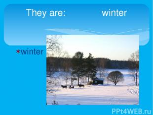 winter They are: winter