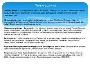 Заповедники Беловежская пуща – заповедник, находящийся на границе Беларуси и Пол