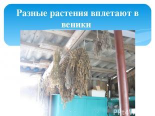 Разные растения вплетают в веники