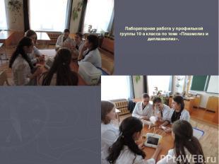 Лабораторная работа у профильной группы 10 а класса по теме «Плазмолиз и деплазм