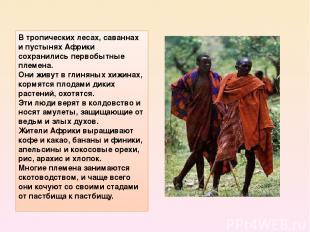 Втропических лесах, саваннах и пустынях Африки сохранились первобытные племена.