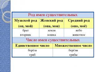 Род имен существительных Мужской род (он, мой) Женский род (она, моя) Средний ро