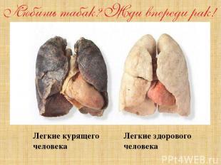 Легкие курящего человека Легкие здорового человека