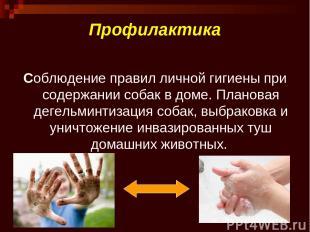 Профилактика Соблюдение правил личной гигиены при содержании собак в доме. Плано