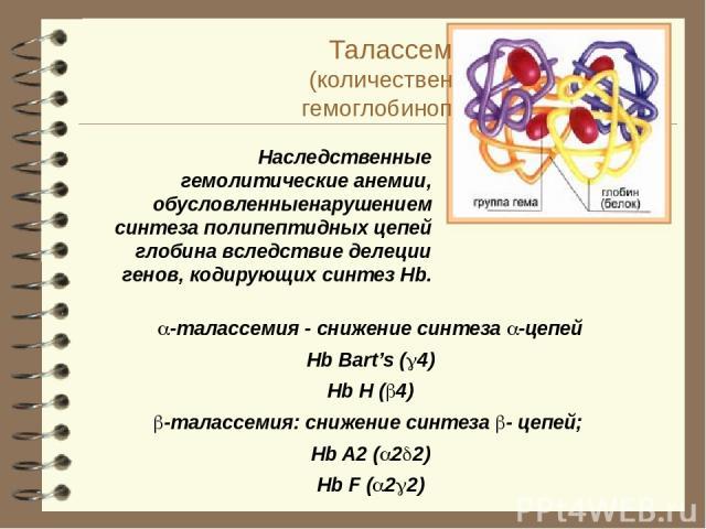 Талассемии (количественные гемоглобинопатии)