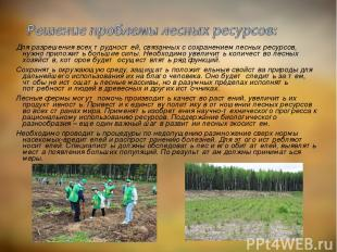 Для разрешения всех трудностей, связанных с сохранением лесных ресурсов, нужно п