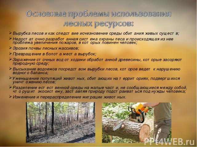 Вырубка лесов и как следствие исчезновение среды обитания живых существ; Недостаточно разработанная система охраны леса и происходящая из нее проблема увеличения пожаров, в которых повинен человек; Эрозия почвы лесных массивов; Превращение в болота …