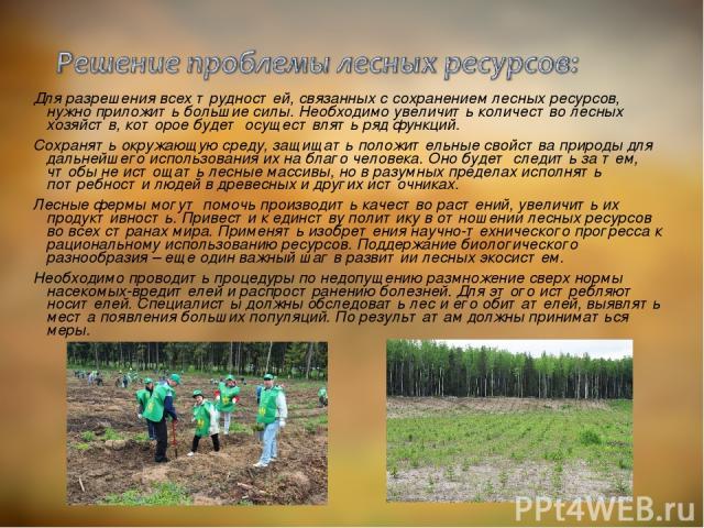 Для разрешения всех трудностей, связанных с сохранением лесных ресурсов, нужно приложить большие силы. Необходимо увеличить количество лесных хозяйств, которое будет осуществлять ряд функций. Сохранять окружающую среду, защищать положительные свойст…