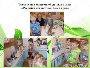 Экскурсия в мини-музей детского сада «Растения и животные Коми края»