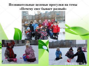 Познавательные целевые прогулки на темы «Почему снег бывает разный»