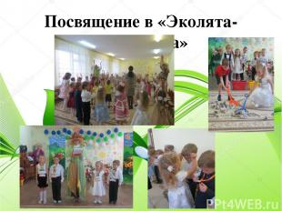 Посвящение в «Эколята-дошколята»