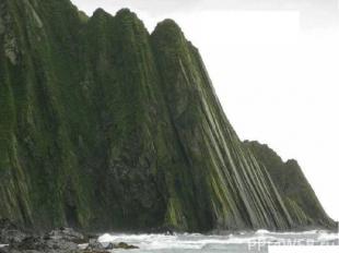 Побережье острова Беринга