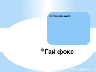 Гай фокс