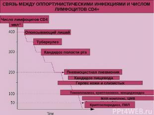 СВЯЗЬ МЕЖДУ ОППОРТУНИСТИЧЕСКИМИ ИНФЕКЦИЯМИ И ЧИСЛОМ ЛИМФОЦИТОВ CD4+ Число лимфоц