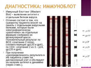 Иммунный блоттинг (Western Blot) – выявление антител к отдельным белкам вируса.