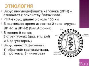 Вирус иммунодефицита человека (ВИЧ) – относится к семейству Retroviridae. РНК-ви
