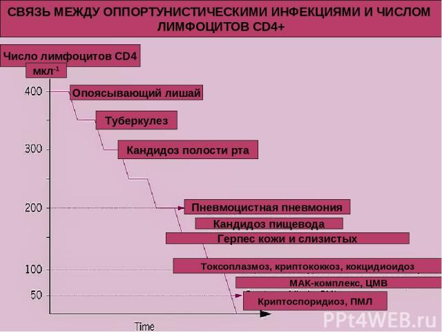 СВЯЗЬ МЕЖДУ ОППОРТУНИСТИЧЕСКИМИ ИНФЕКЦИЯМИ И ЧИСЛОМ ЛИМФОЦИТОВ CD4+ Число лимфоцитов CD4 мкл-1 Опоясывающий лишай Туберкулез Кандидоз полости рта Пневмоцистная пневмония Кандидоз пищевода Герпес кожи и слизистых Токсоплазмоз, криптококкоз, кокцидиои…