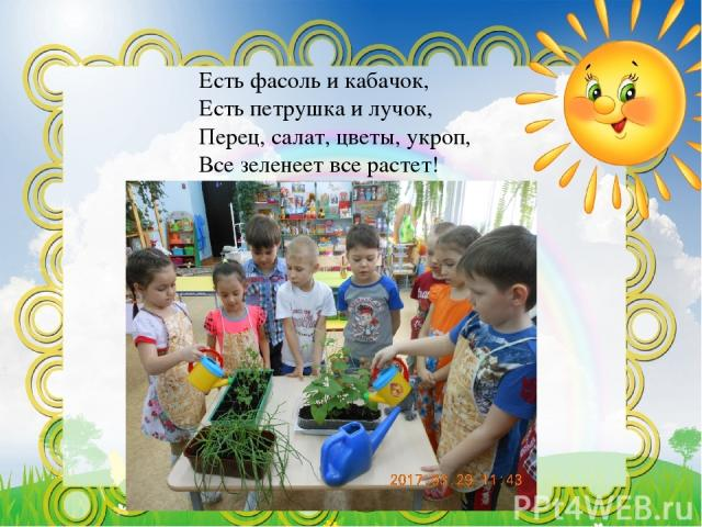 Есть фасоль и кабачок, Есть петрушка и лучок, Перец, салат, цветы, укроп, Все зеленеет все растет!