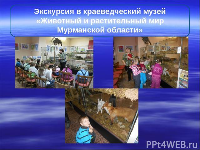Экскурсия в краеведческий музей «Животный и растительный мир Мурманской области»